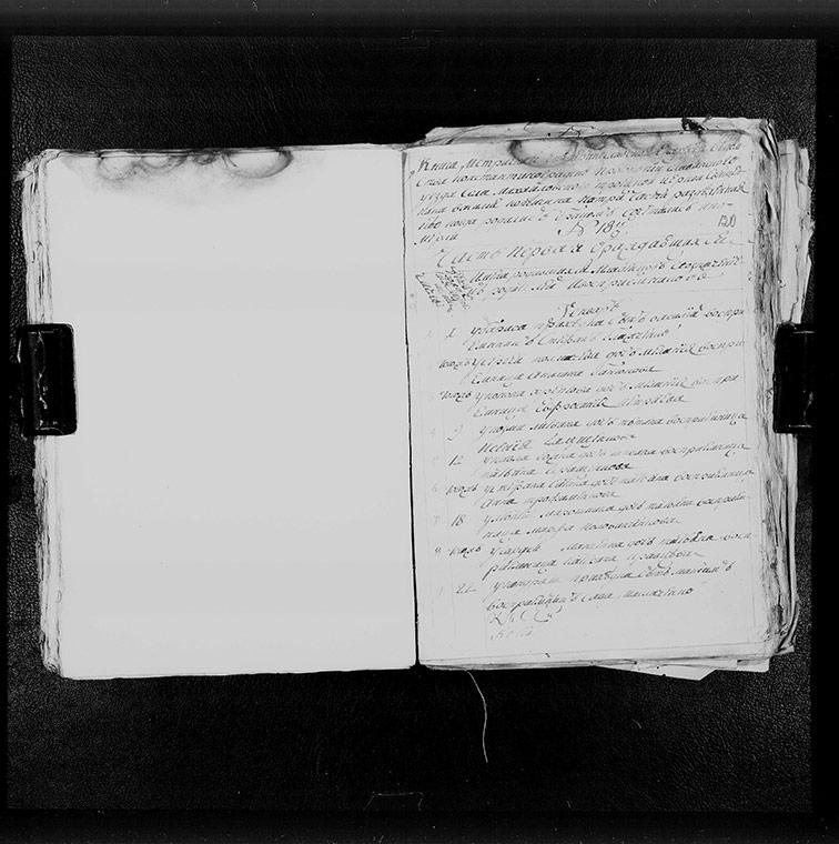 Метрическая книга Троицкой церкви села Михайловка за 1793 год