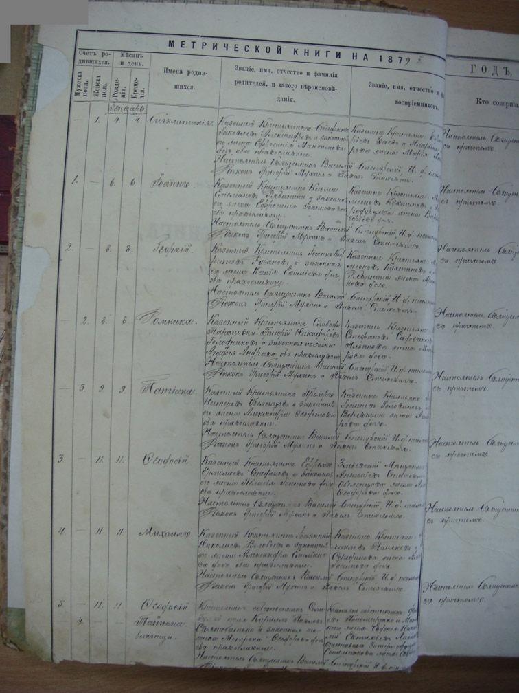 Метрическая книга Троицкой церкви села Охочее за 1879 год
