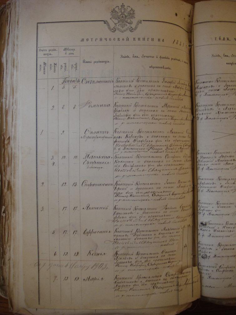 Метрическая книга Троицкой церкви села Охочее за 1881 год