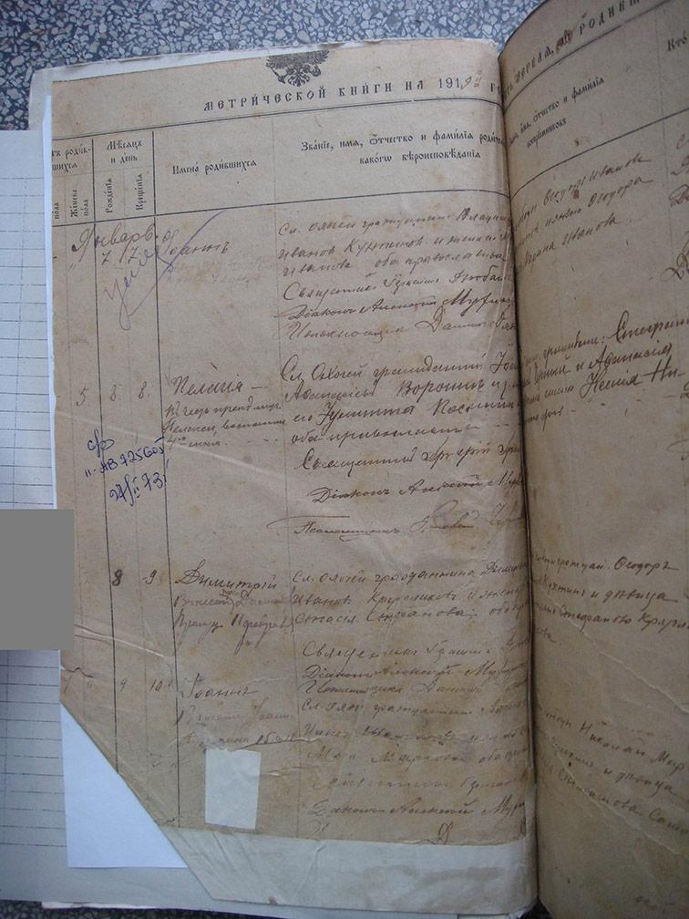 Метрическая книга Троицкой церкви села Охочее за 1919 год