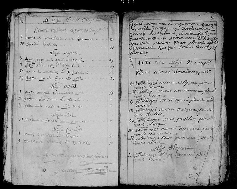 Метрическая книга Преображенской церкви села Петровское за 1771 год