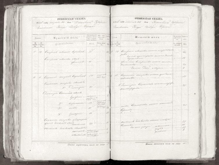Фрагмент ревизской сказки слободы Берека Змиевского уезда Харьковской губернии 1858 года