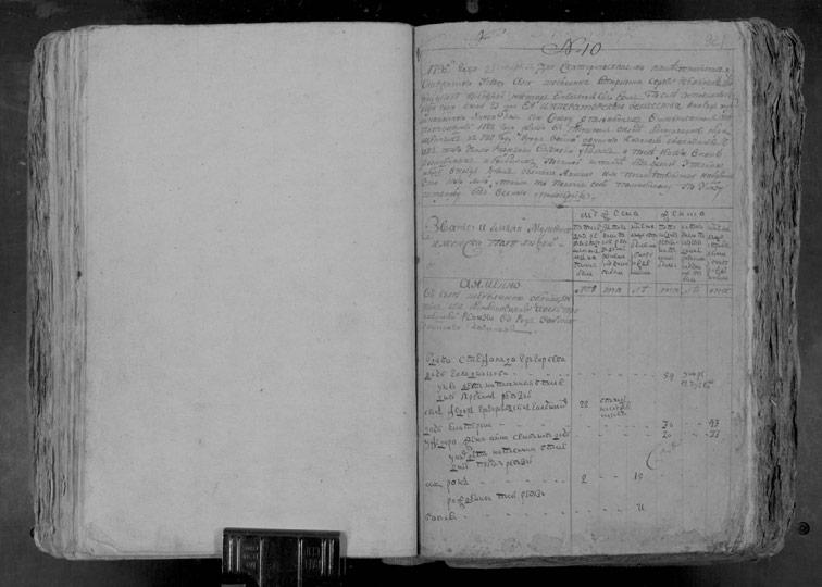 Ревизская сказка Шебелинки 1795 год (5-я ревизия)