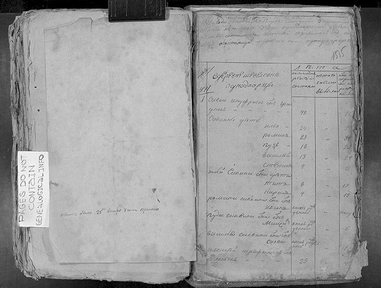 Ревизская сказка Шевелевки 1811 год (6-я ревизия)